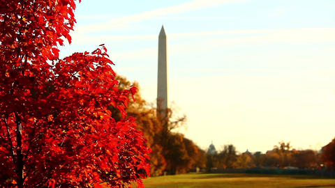 Shot of the Washington Monument in Washington DC with rack focus Footage