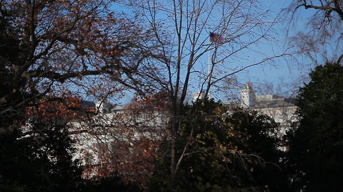 A shot of the White House from behind some trees and bushes in Washington DC Footage