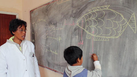 Static shot of young boy and teacher at chalkboard Footage