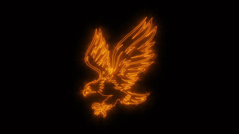 Orange Burning Eagle Animated Logo with Reveal Effect GIF