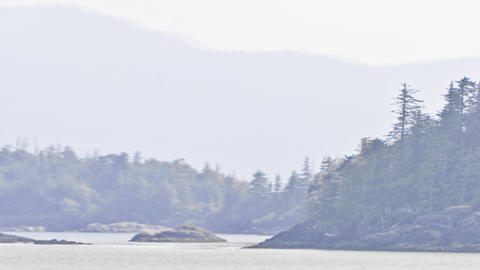 Traveling time lapse view of the Inside Passage with a foggy mist over the lands Footage