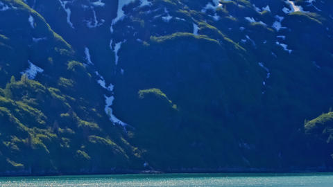 Traveling time-lapse of green and snowy shore of Glacier Bay, Alaska Footage