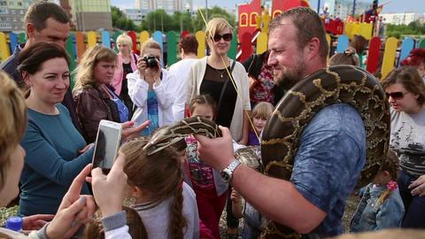 Huge snake Python around the shoulders of man Live Action