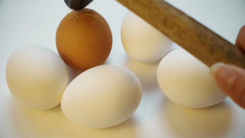 Different color egg cracked by hammer. Broken life. bullying, xenophobia, racism Footage