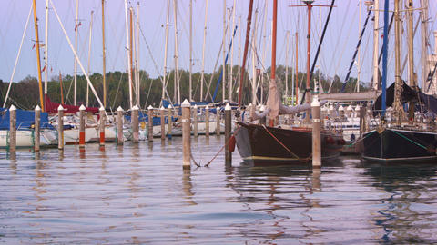 Panning shot of sailboats docked in the marina. Public Gardens are visible in th Footage