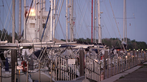 Static shot of sailboats and the dock in the marina at dusk Footage
