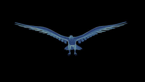 Hologram of a rotating particle eagle Footage