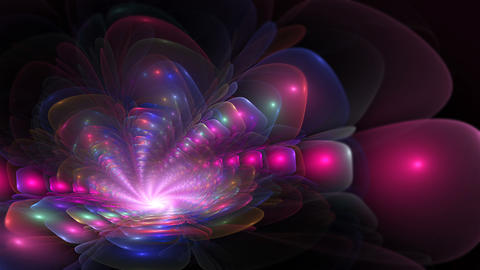 Abstract colorful fractal flower in violet color Animation