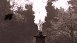 Smoking chimney near forest, sephia Footage