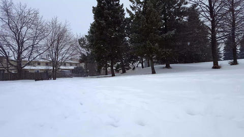 Snow Storm Blizzard in Suburb Public Park. Snowing Nature Scene in Suburban Residential Area. Snowy Footage