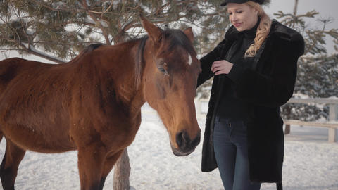 Pretty smiling woman strokes muzzle of adorable horse standing in winter ranch Live Action