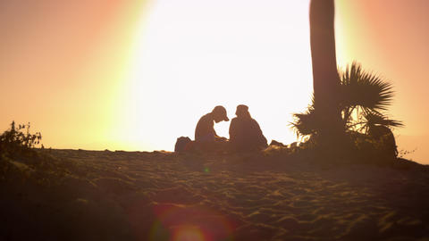 Lens flare shot of two people beside a tree near Venice Beach, California Footage