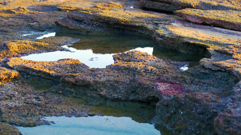 Royalty Free Stock Video Footage of tide pools at Dor Beach shot in Israel at 4k Footage