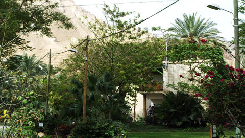 Royalty Free Stock Video Footage of an oasis kibbutz residence shot in Israel at Footage
