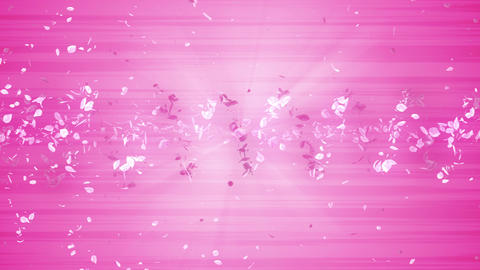 Spiral shiny particle of cherry blossoms. Sakura pattern. Japanese cherry dancing. Vortex from pink Animation