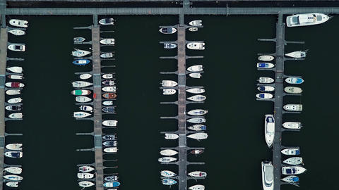 Sea port with luxury speedboats for sail sport and yachting tourism Live Action