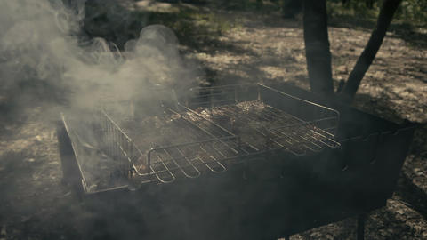Incredible delicacy - grilled meat in the forest SLOW MOTION Live Action