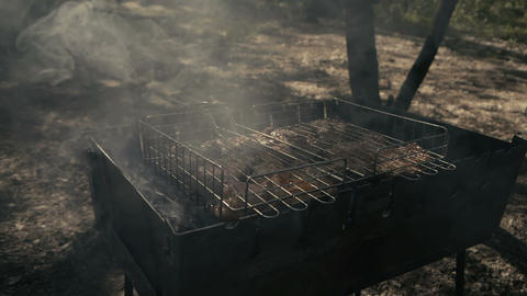Incredible delicacy - grilled meat in the forest with smoke in slow motion Live Action