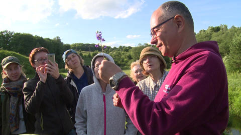 Botanic specialist tell tourists people about rare species of flower Live Action