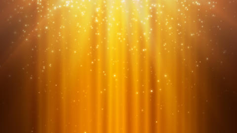 Golden Rays and Falling Particles Stock Video Footage