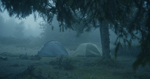 Horror look in the forest - Two spherical tents in a grassy lawn in a forest Live Action