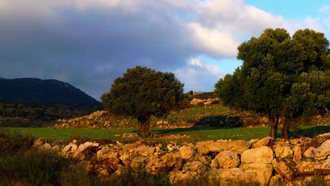 Royalty Free Stock Video Footage panorama of a pastoral hillside shot in Israel  Footage
