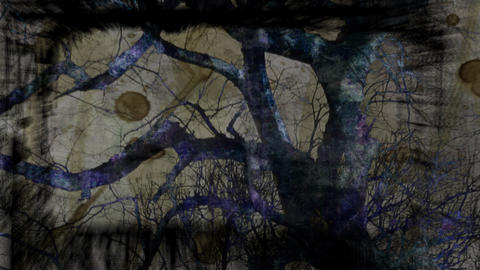 Abstract visualization of a silhouetted tree Stock Video Footage