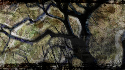 Abstract visualization of a silhouetted tree Animation