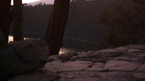 Static shot of tree trunks and rock with Lake Tahoe in the background Footage