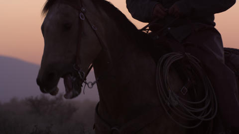 Close up shot of cowboys and horses in the sunset. Slow motion Footage