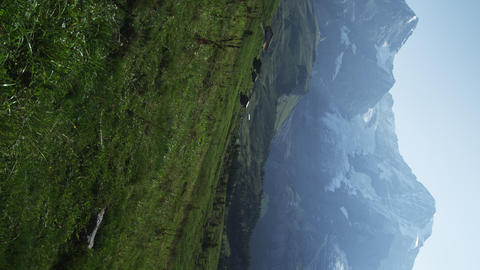 Static shot of green grass and snow covered Swiss Alps Footage