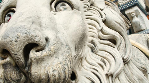 detail, sculpture of a lion in the Cathedral of San Lorenzo (cathedral of Genoa Footage