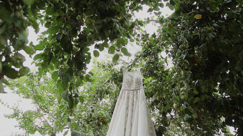 White wedding dress hanging on a green tree, white bridesmaid dress hanging Footage