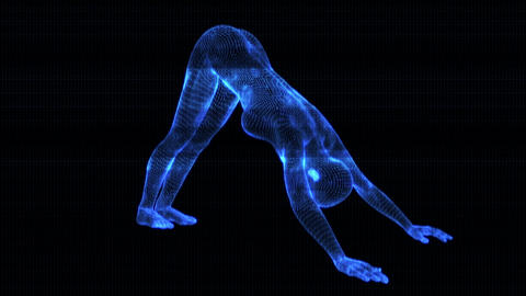 4K Holographic Future Android AI Woman Yoga Dolphin Seamless Loop Animation