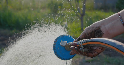 Female hand keeping a shower head and pouring green plants in summer in slo-mo Footage