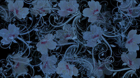 flower pattern background Stock Video Footage