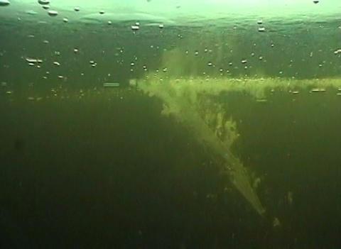 ice-hole Stock Video Footage