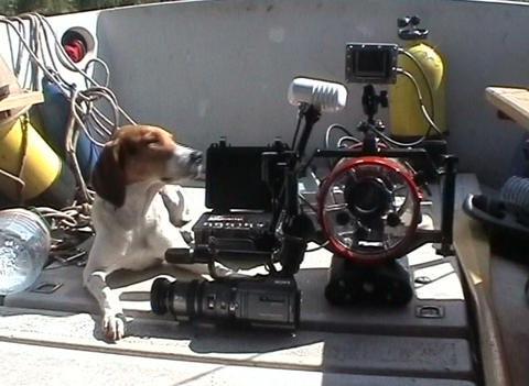 Shipboard equipment for underwater photography Stock Video Footage