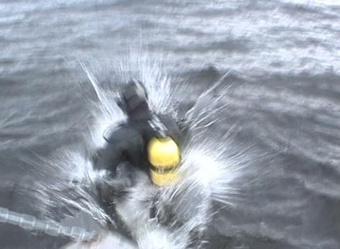 Skin-diver plunges under water Stock Video Footage
