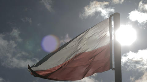 Flag of Poland Live Action