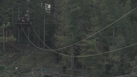 Men ride a zipline attraction in the woods Live Action