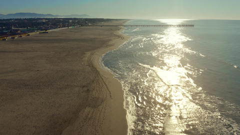Aerial view of unknown people walking their dogs on the sand beach in the Footage