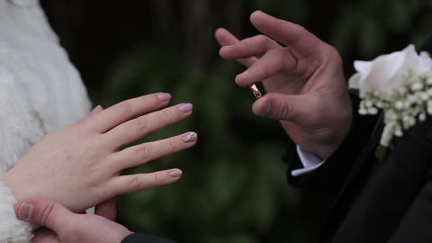 Very beautiful newlyweds put rings on each other Live Action