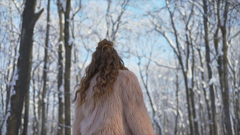 Stylish girl in a fur coat in the winter park.. Beautiful Russian girl in fur Live Action