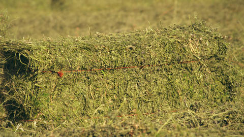 Medium shot of a hay baler dropping a bale of hay on the ground Footage
