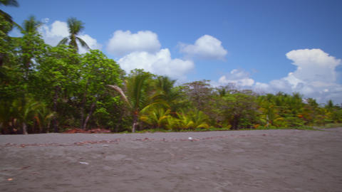 Footage of tropical beach, pans to record building behind trees Footage
