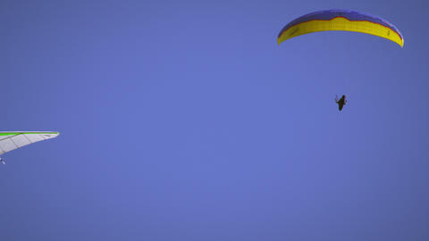 Shot of hang glider and paraglider in the air near eachother Footage
