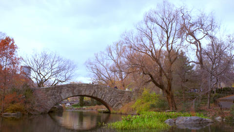 People walking over a bridge in Central Park, New York Footage