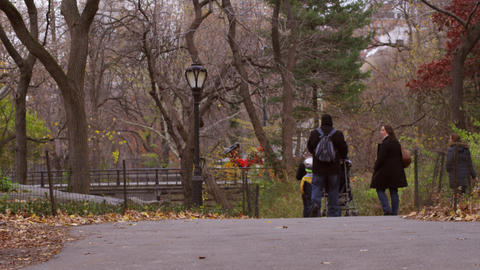 Shot of a family walking down a park path in New York City Footage