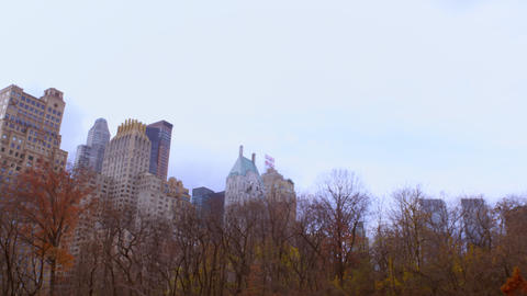Panning shot of buildings in New York City behind colorful trees Footage